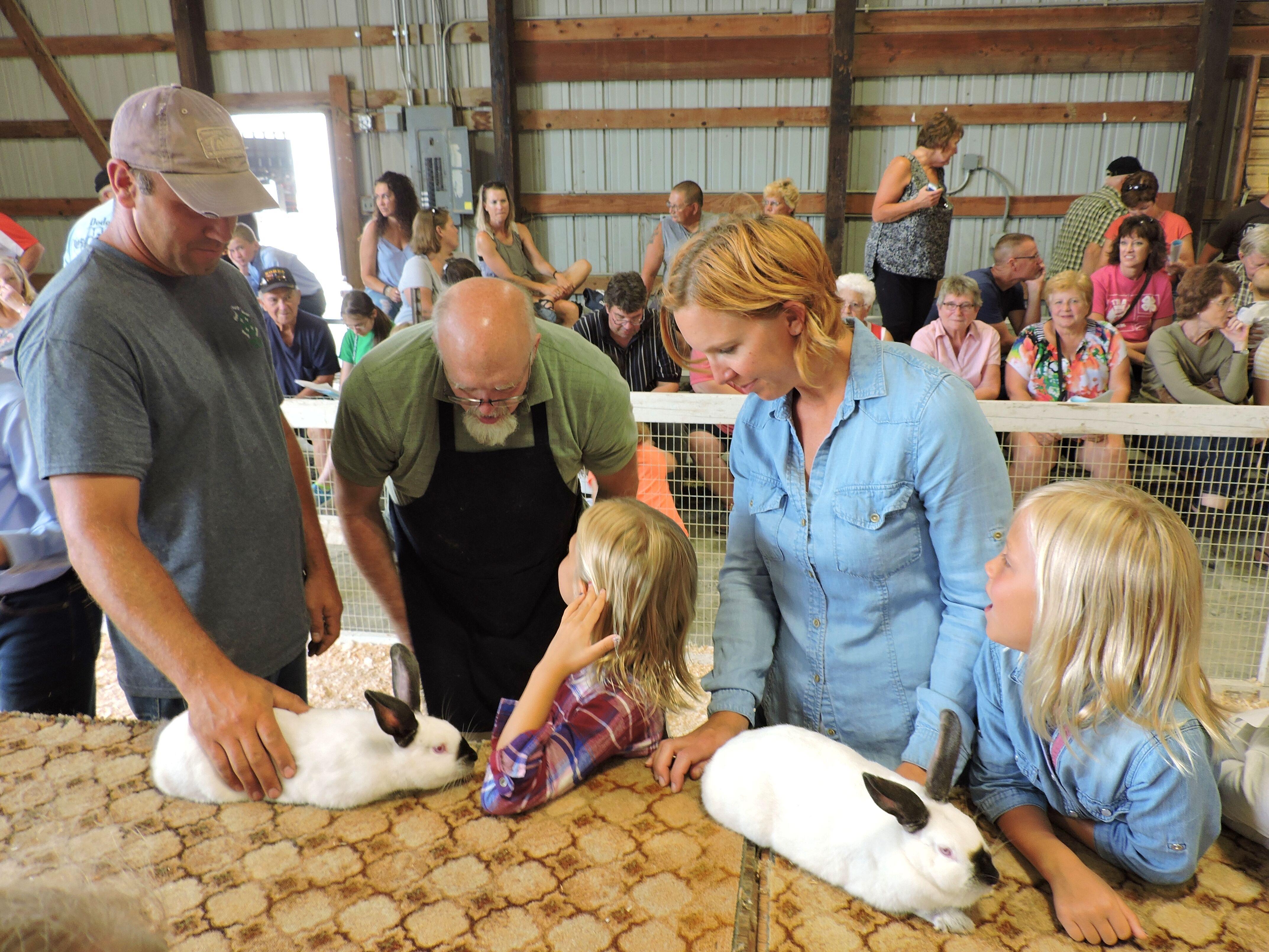 Open Rabbit Show | Dodge County Free Fair
